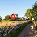 Aktivitäten Schweden